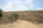 McLean Overlook trail head, Chino Hills State Park