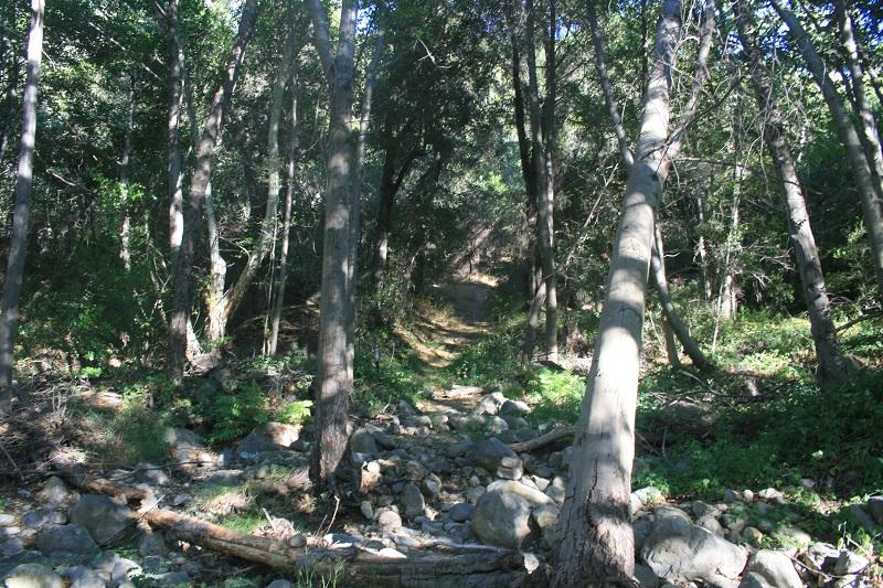 Murrieta Creek, Ojai, CA
