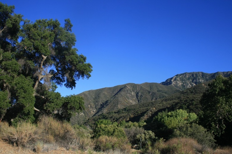 Old Man Mountain, Los Padres National Forest, Ojai, CA