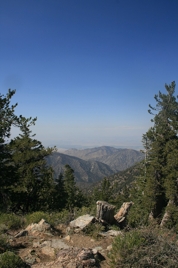 Mt. Pinos, Ventura County, CA
