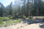 Mt. Pinos Trail Head, Ventura County, CA