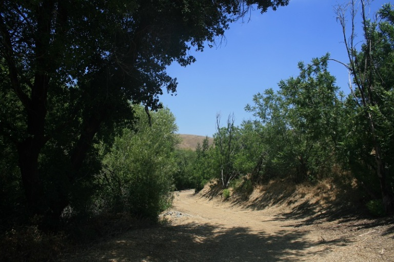 Telegraph Canyon, Chino HIlls State Park