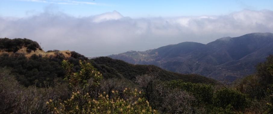 View from Buzzard's Roost, Zuma Ridge Motorway, Santa Monica Mountains