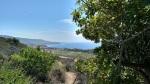 Alta Vicente Trail, Palos Verdes Peninsula, CA