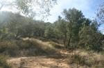 McMenemy Trail, Montecito, CA