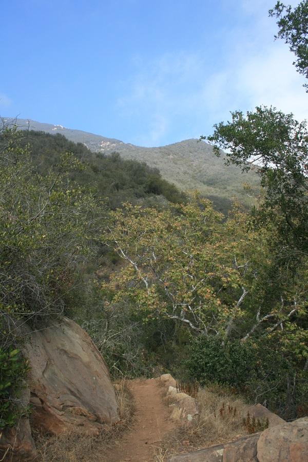Buena Vista Canyon, Montecito, CA