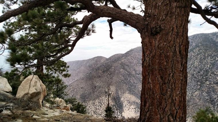 Winston Ridge, Angeles National Forest, CA