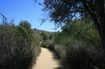 Access trail to the Douglas Family Preserve, Santa Barbara, CA