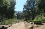 Easton Aqueduct Trail, Santa Barbara Botanic Garden