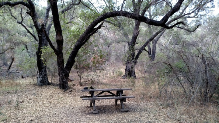 Picnic table, Malibu Creek State Park, CA