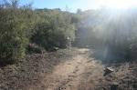 Ernie Pantoja Memorial Trail, Dos Picos County Park, CA