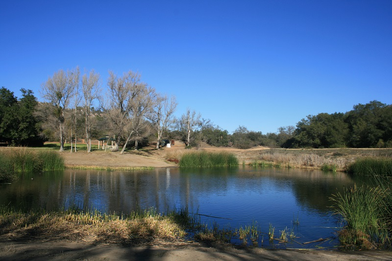 Pond at Dos Picos County Park, Ramona, CA