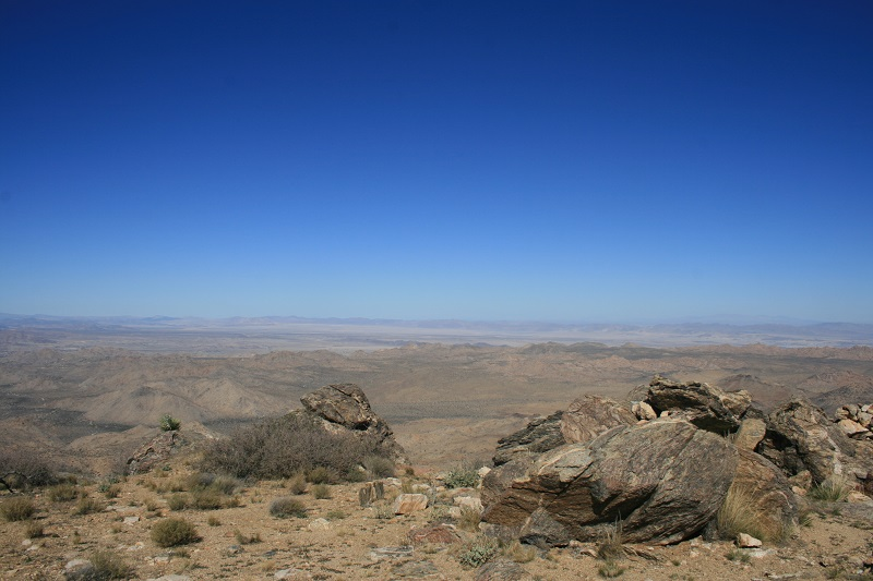 View from Quail Mountain, Joshua Tree National Park