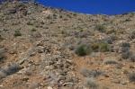 Ascending the east ridge of Quail Mountain, Joshua Tree National Park
