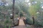 Suycott Wash, Mission Trails Regional Park, San Diego, CA