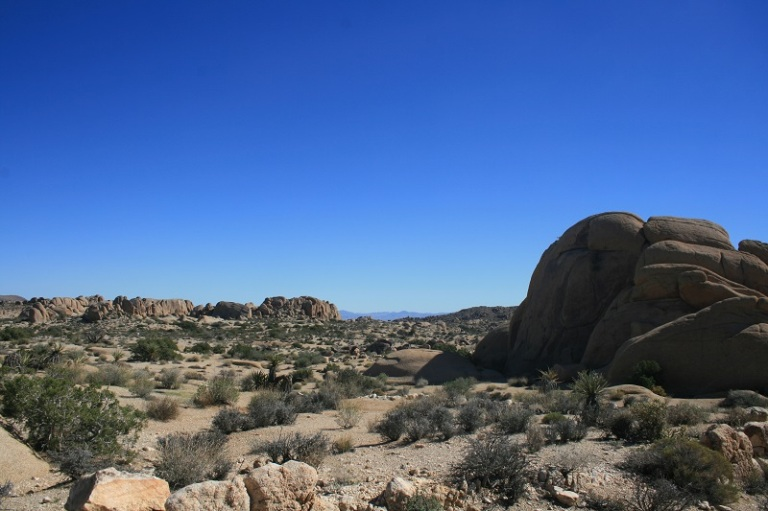 Panoramic view of the desert, Skull Rock Trail, Joshua Tree National Park