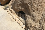 Skull Rock Trail, Joshua Tree National Park