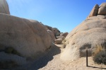 Skull Rock Trail, Joshua Tree National Park