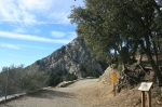 Eaton Saddle, Angeles National Forest, CA