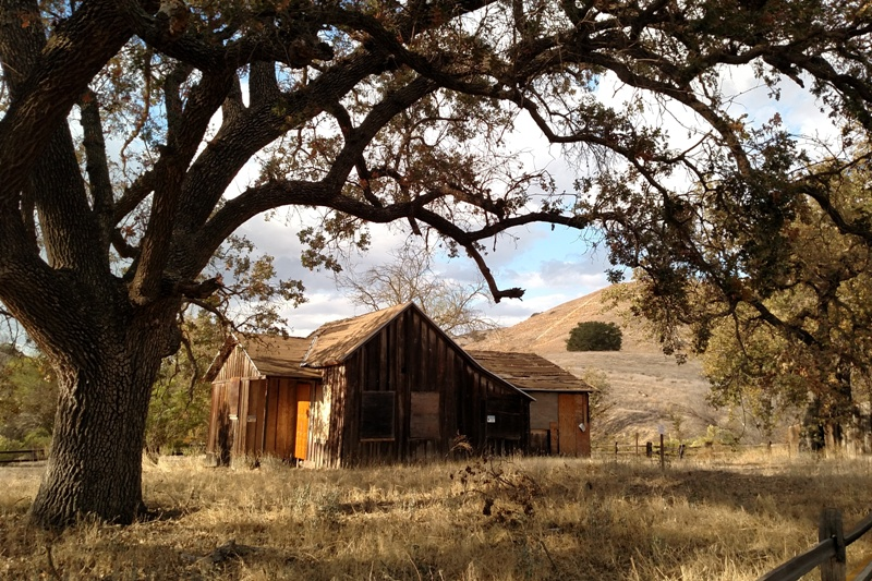 LCMR Ranch and Oak
