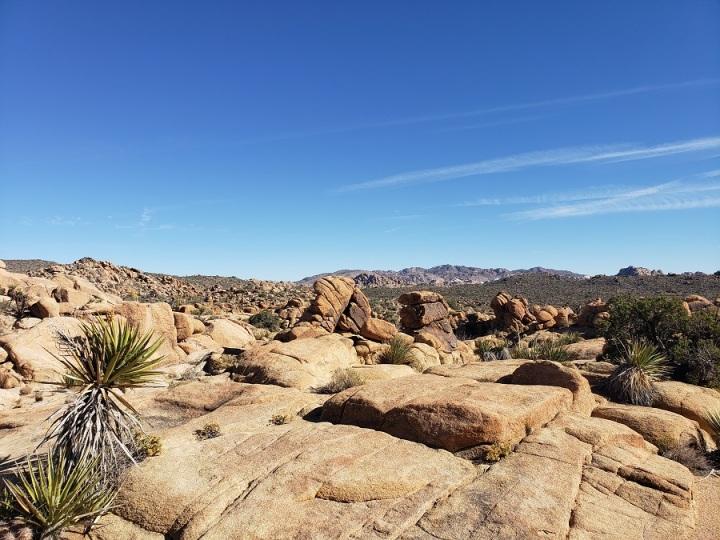 Wonderland of Rocks, Joshua Tree National Park