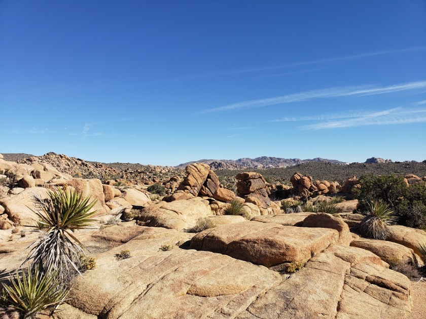 Wonderland of Rocks, Joshua Tree National Park