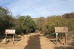 Gridley Trail, Ojai, CA