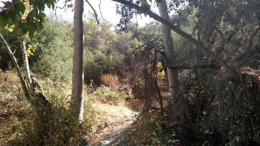 Claire's Spur Trail, Sullivan Canyon, Los Angeles