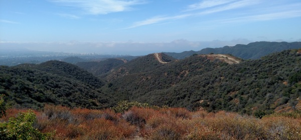 West Mandeville Ridge Trail, Los Angeles, CA