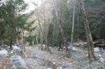 Lytle Creek, San Bernardino National Forest, CA