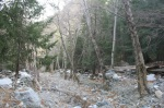 Lytle Creek, San Bernardino National Forest, CA