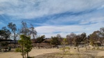 Picnic area, Castaic Lake, CA