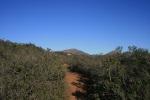 Trail to Twin Peaks, Poway, CA