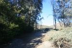 Twin Peaks trail, Poway, CA