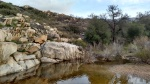 Pine Valley Creek, San Diego County, CA