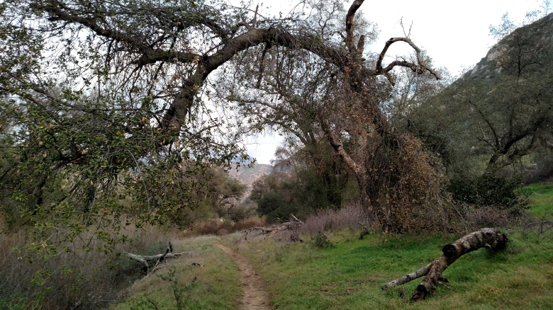 Horsethief Canyon, San Diego County, CA
