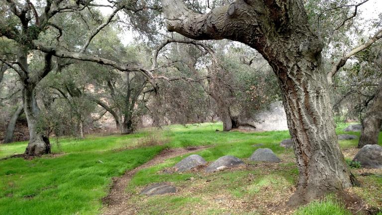 Hollenbeck Canyon, San Diego County, CA