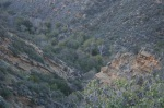 Birabent Canyon, Los Padres National Forest, CA