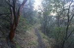 La Jolla Trail, Santa Barbra County, CA