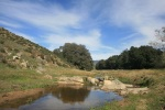 Santa Ysabel Creek, San Diego County, CA