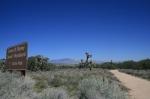 Arthur B. Ripley Desert Woodland State Park, California