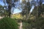 Shepherd Canyon, San Diego, CA