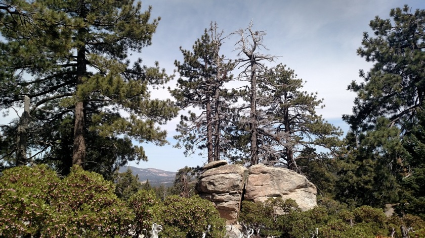 Skyline Trail, Big Bear Lake