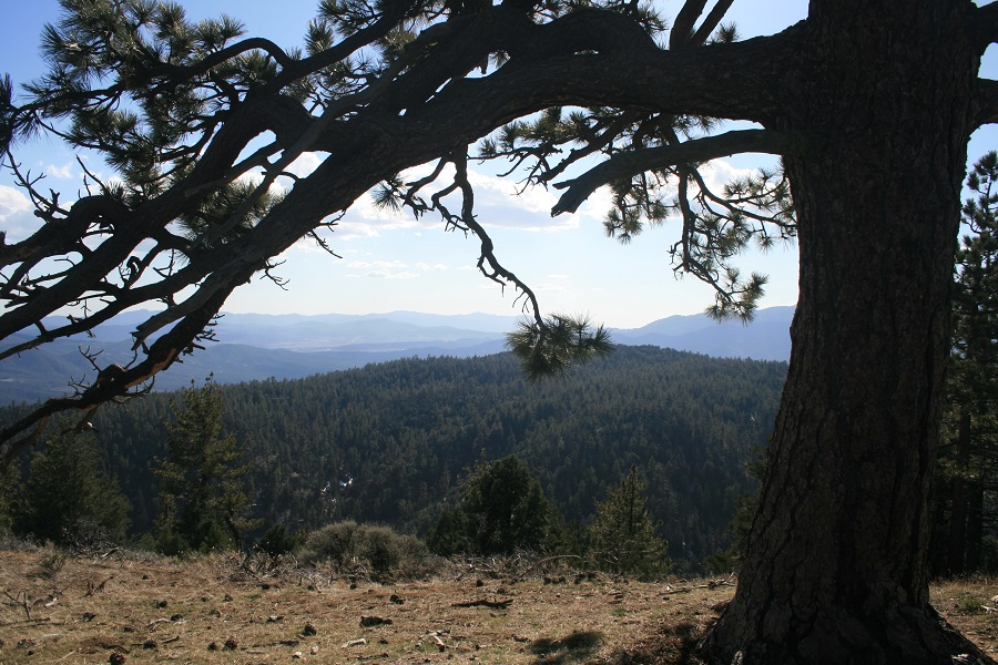 Southwest view from Tecuya Mountain, Frazier Park, CA