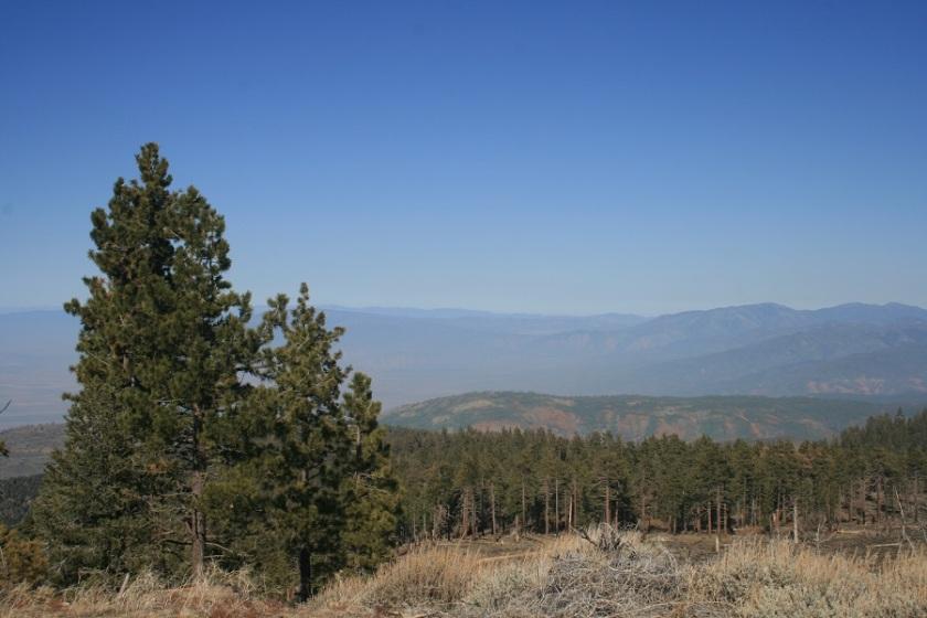 Tecuya Mountain, Frazier Park, CA