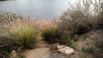 Dixon Lake, Escondido, CA