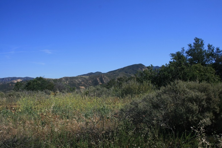 Irvine Mesa, Orange County, CA