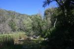 San Jacinto River south fork