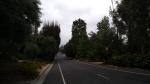 El Vago St., La Canada Flintridge, CA