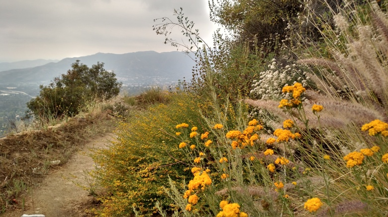 Cross Town Trail, La Canada, CA